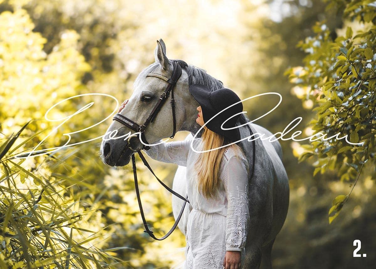 bon cadeau photo - Faustine Gauchet - design cheval et cavalier
