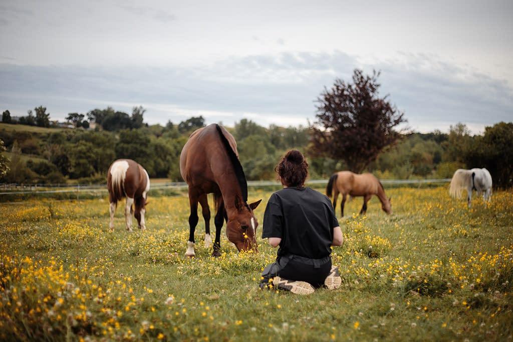 Backstage cours de photographie équine, photographe et chevaux