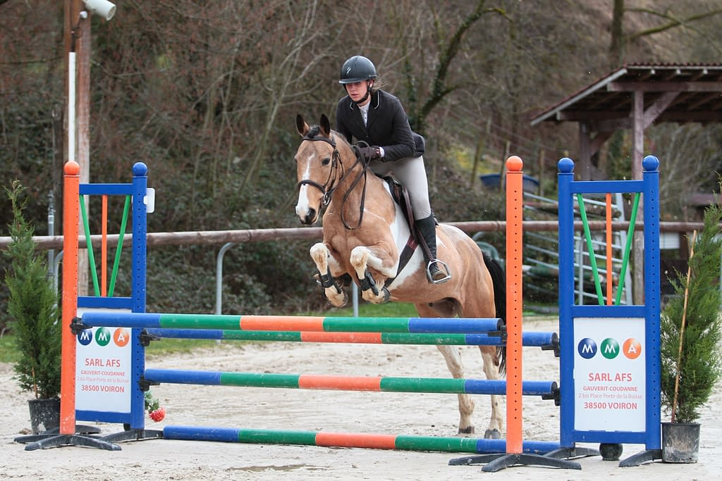 Cheval sautant un obstacle oxer