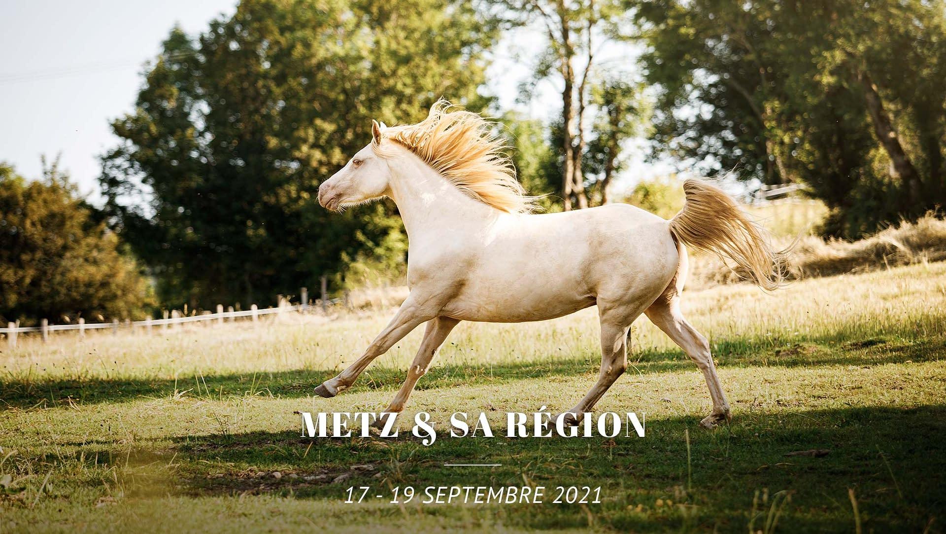 Tournée photo Metz Moselle