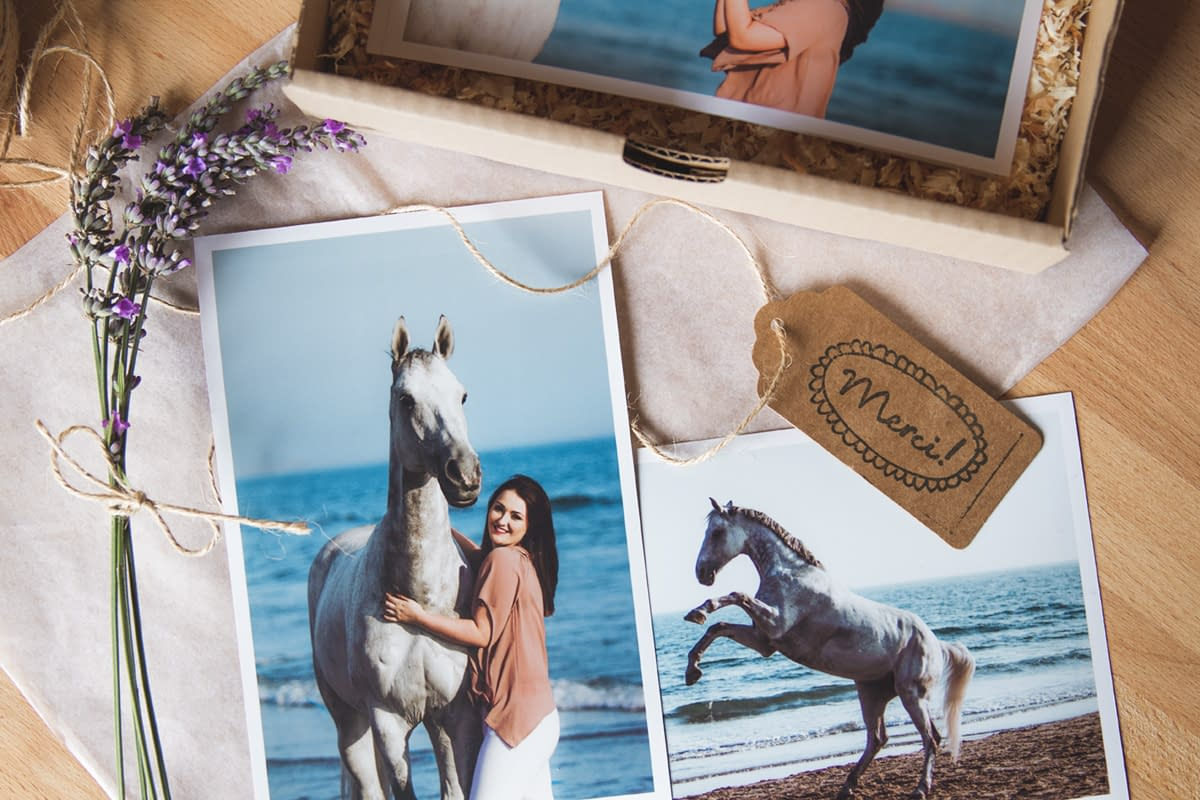 packaging photographe chevaux