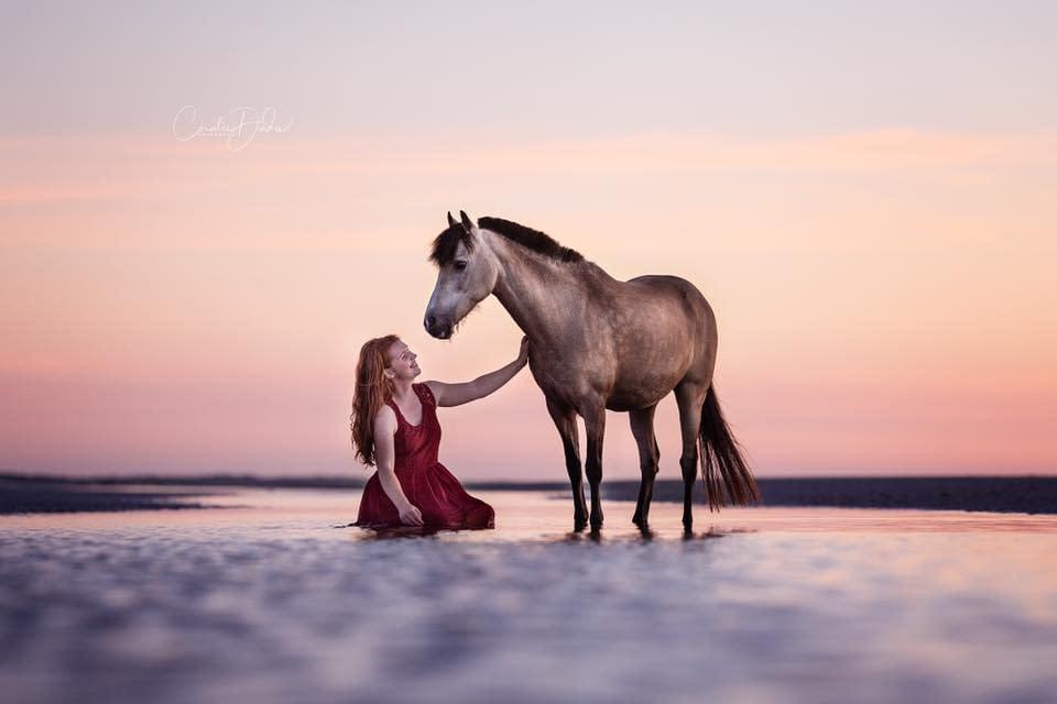 un poney et sa cavalière sur une plage au coucher du soleil